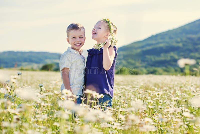 Lovely little children in the field stock photo