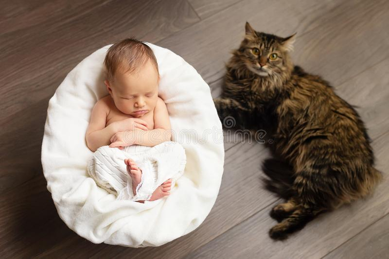 Lovely newborn baby girl is sleeping with a cat. Children and animals, pets.  royalty free stock images