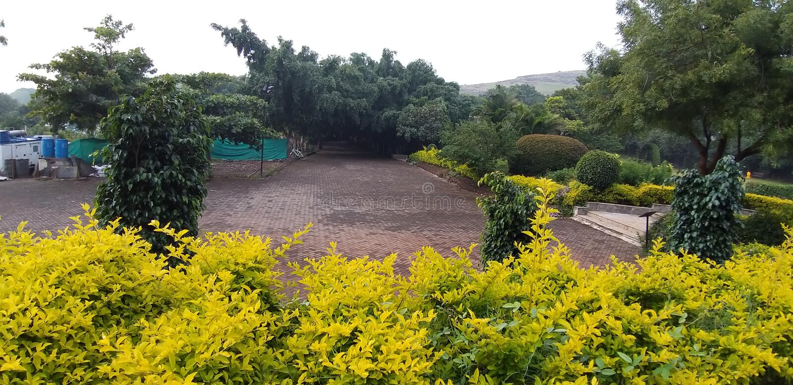 An outdoor garden in Pune India. A lovely outdoor garden in Pune India during rainy season royalty free stock photos