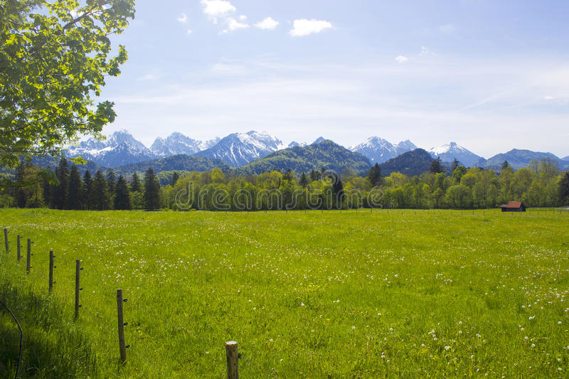 Download Lovely Panorama In The Alps Stock Image - Image of green, grass: 39515201