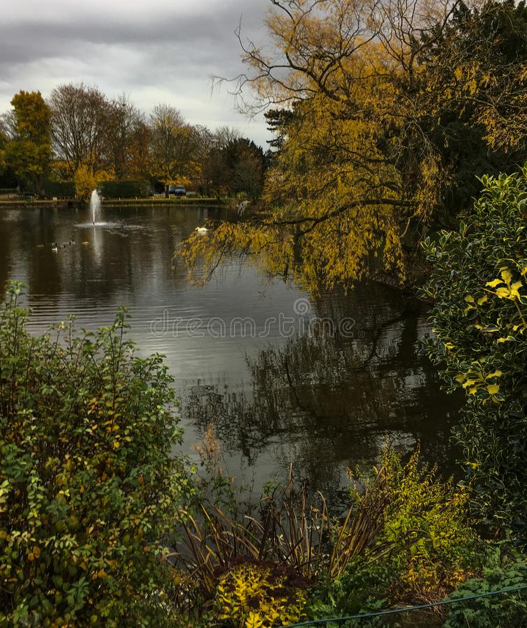 Lovely peaceful early autumn scene of pond and trees at Bletchley Park. Lovely peaceful early autumn scene of pond and green and yellow leafed trees at Bletchley royalty free stock photos