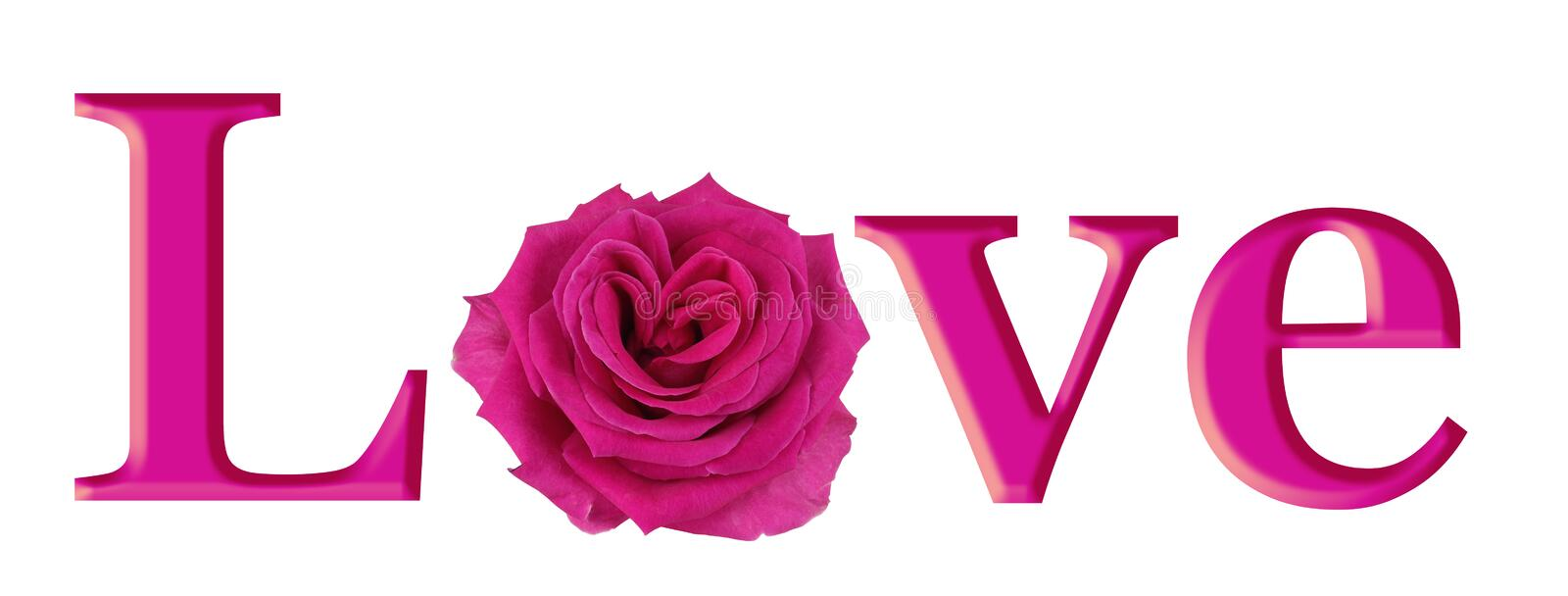 Lovely Pink Rose Heart in LOVE. Simple pink graphic of the word LOVE with a beautiful heart shaped pink rose making the O isolated on white vector illustration