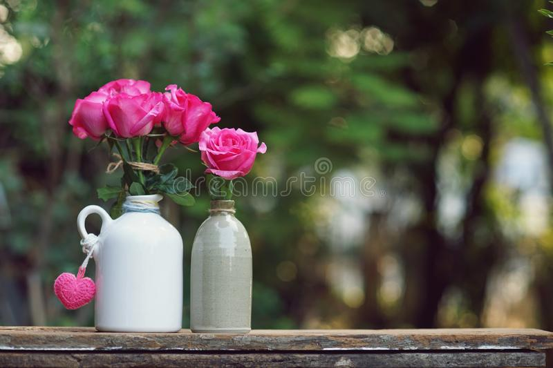 Lovely pinky blossom rose in vase on wooden table with white wall background, sweet gift concept. Copy space stock photo