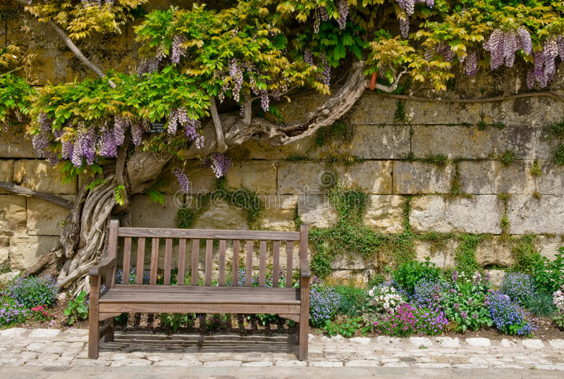 Download A Lovely Place to Rest stock image. Image of purple, climing - 14592105