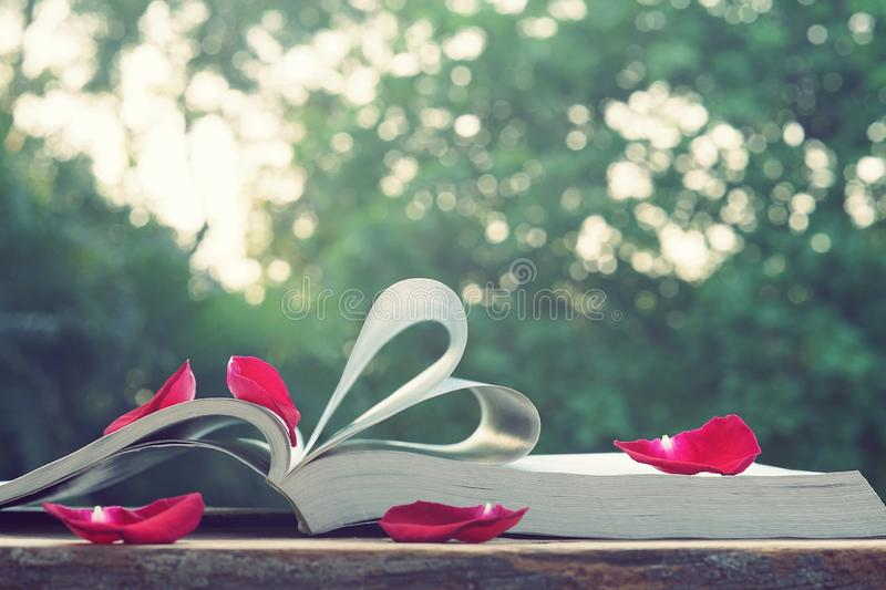 Lovely red color rose petals on book roll into heart shape with blur green garden background, soft color tone, sweet valentine. Lovely red color rose petals on royalty free stock photo