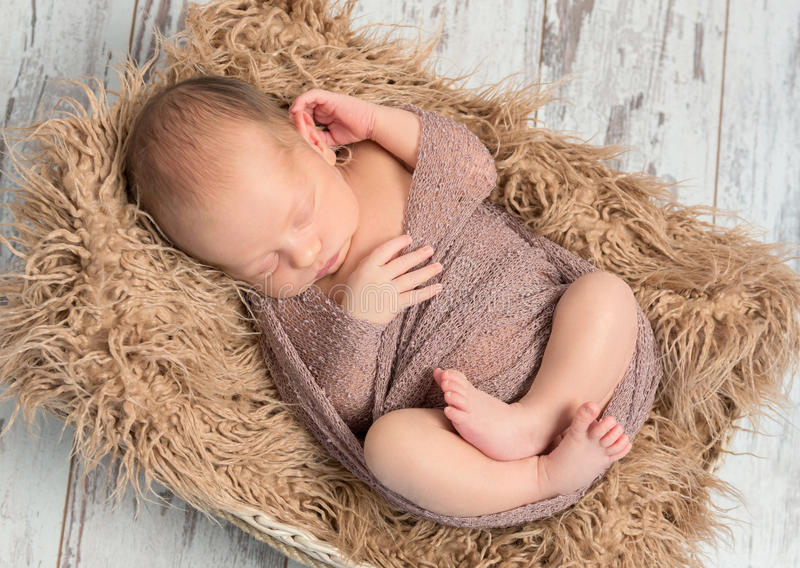 Lovely sleeping baby wrapped in basket with fluffy blanket stock image