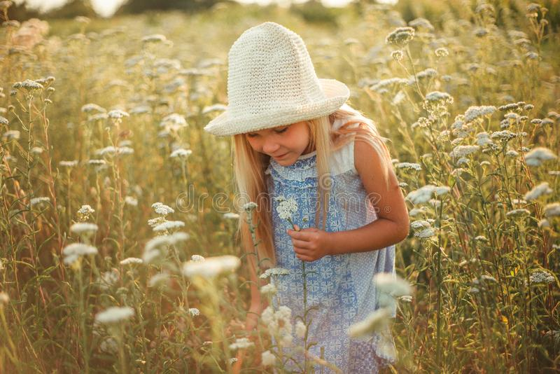 Lovely smiling blond girl in a field at sunset. Cute girl in a flowering field sniffs flowers. Ukrainian in a hat and dress near stock image