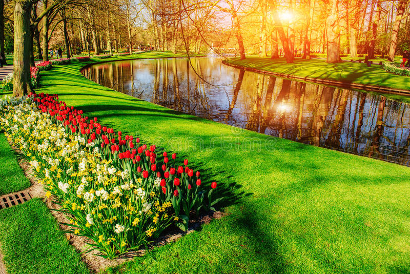 Lovely spring landscape park. Blooming flowers. Sicily. Italy. Europe. A lovely spring landscape park. Blooming flowers. Beauty world royalty free stock images