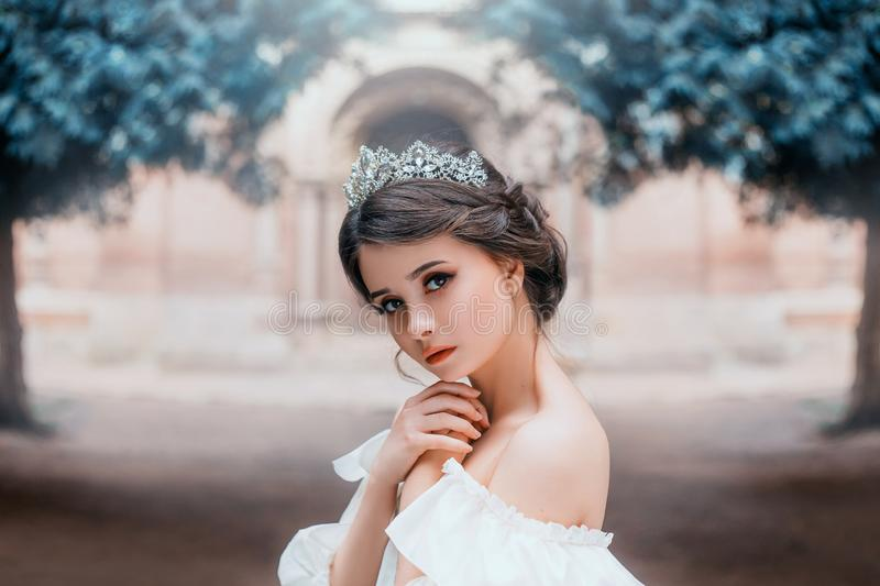 Lovely tender girl with perfect skin and dark magnificent eyes, wonderful work of hairdresser and gathered brown hair. With silver tiara, light natural make-up royalty free stock images