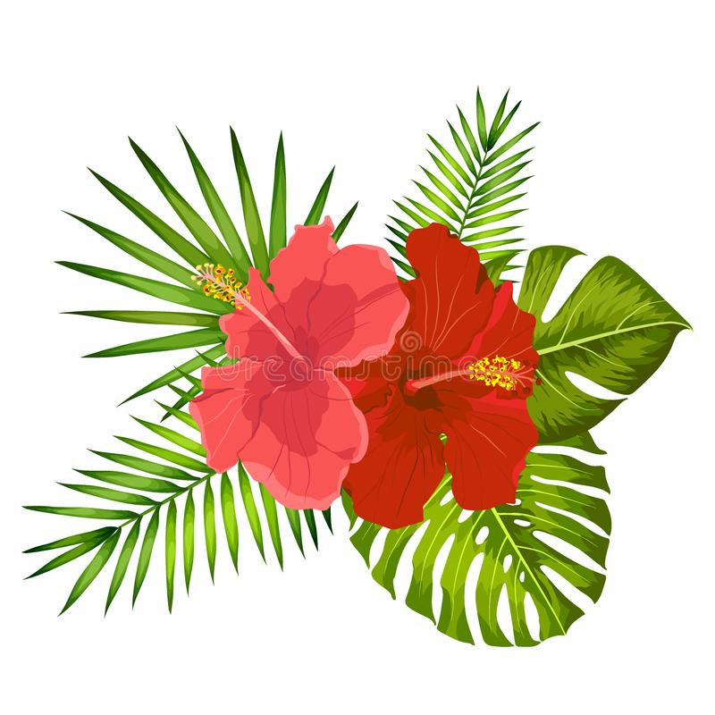 Lovely vector tropical bouquet. Hibiscus and monstera leaves. Exotic flowers and Palm leaves royalty free illustration