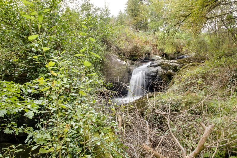Lovely waterfall in typical Irish landscape royalty free stock image