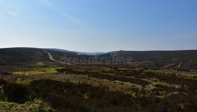 Lovely Wild Heather and Moors Stretching Over the Countryside royalty free stock photography