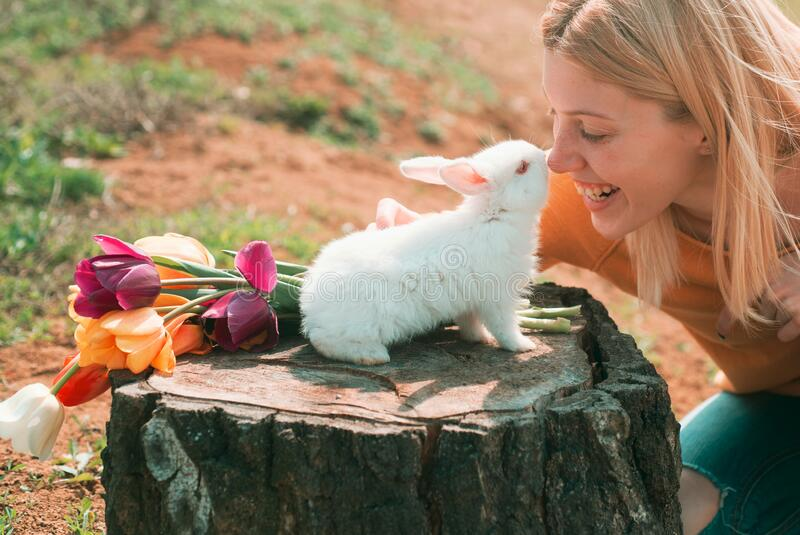 Lovely woman hold white rabbit. Beautiful young woman with bunny rabbit on farm. Happy easter. Rabbit and funny girl. stock image