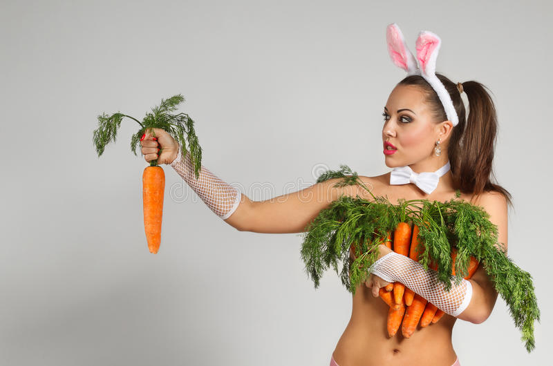Lovely Bunny Royalty Free Stock Images