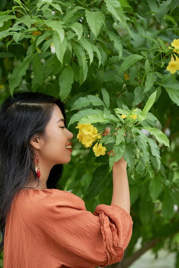 Lovely woman smelling flower stock photo