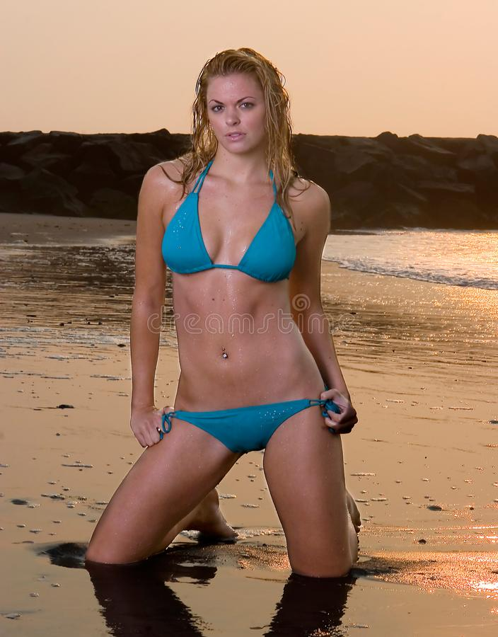 Lovely Young Woman in a Bikini stock photography