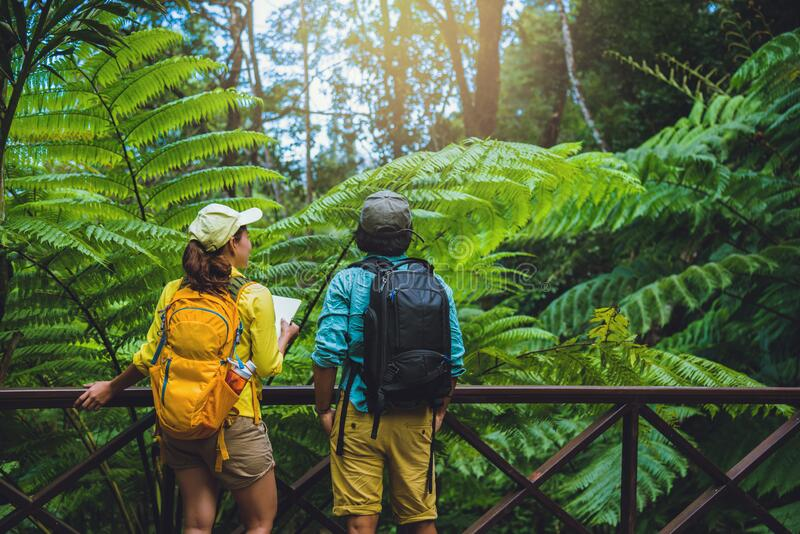 Lover woman and man asian travel nature.Travel relax. Walking and studying nature in the forest. Thailand stock images