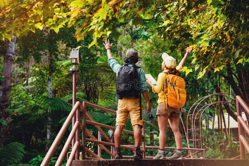 Lover woman and man asian travel nature.Travel relax. Walking and studying nature in the forest. Thailand stock photos