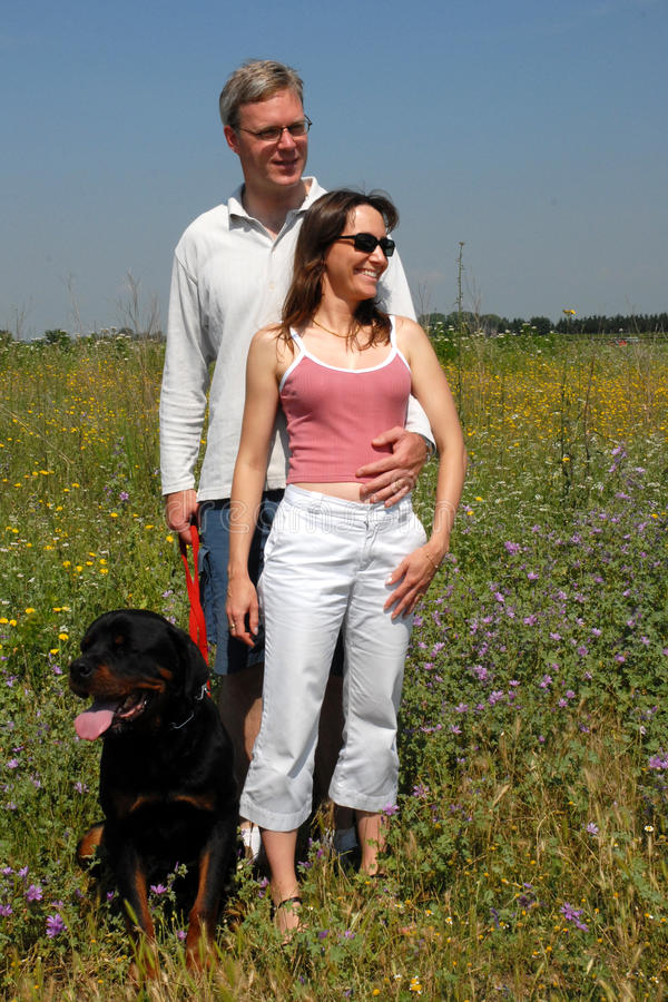 Download Lovers stock image. Image of woman, friends, sheepdog - 13378789