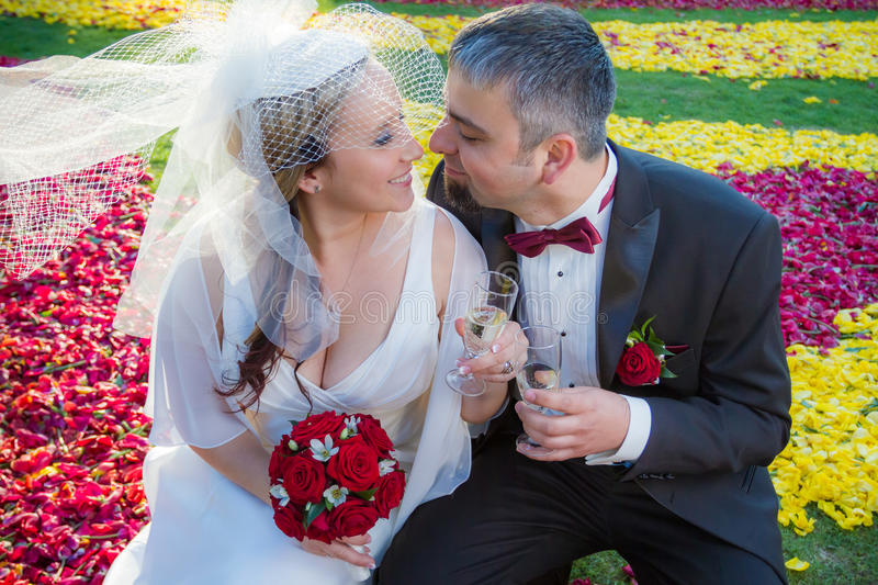 Lovers celebrate their wedding royalty free stock photography