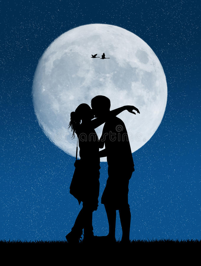 Lovers in the moonlight vector illustration