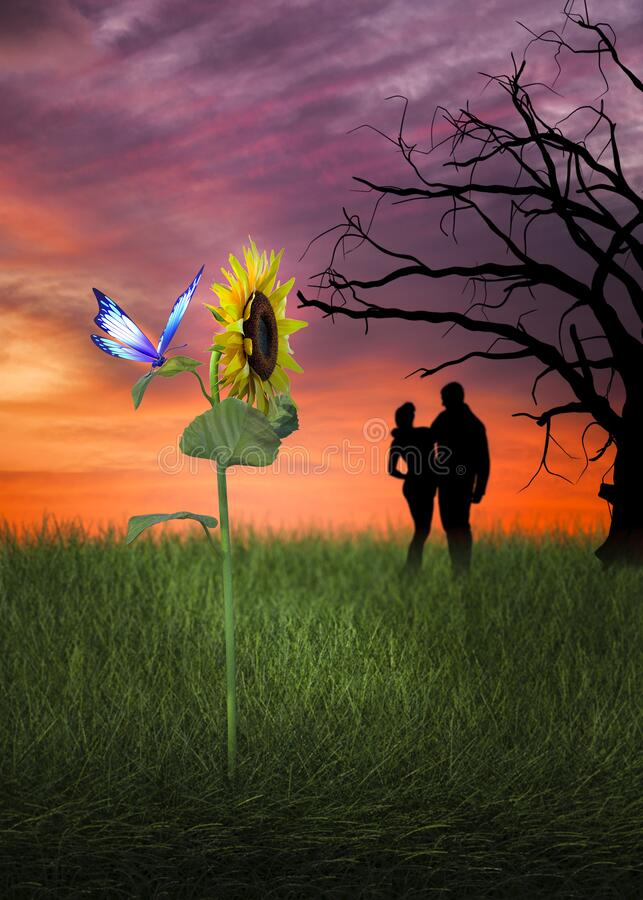 Lovers at sunset with sunflower and butterfly royalty free stock photo
