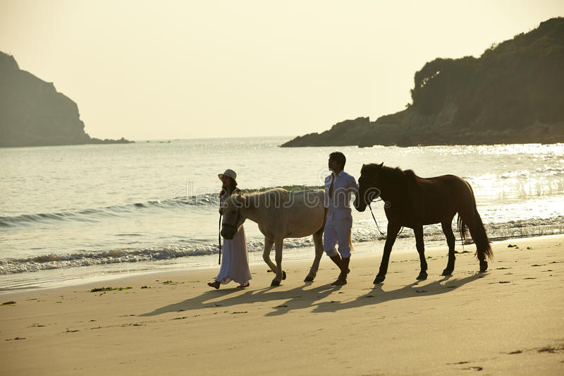 Lovers walking on beach with horses stock image