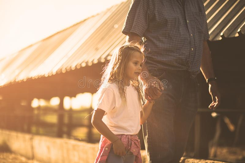 She loves days at the farm. Granddaughter and grandfather on the farm together. Copy space royalty free stock images