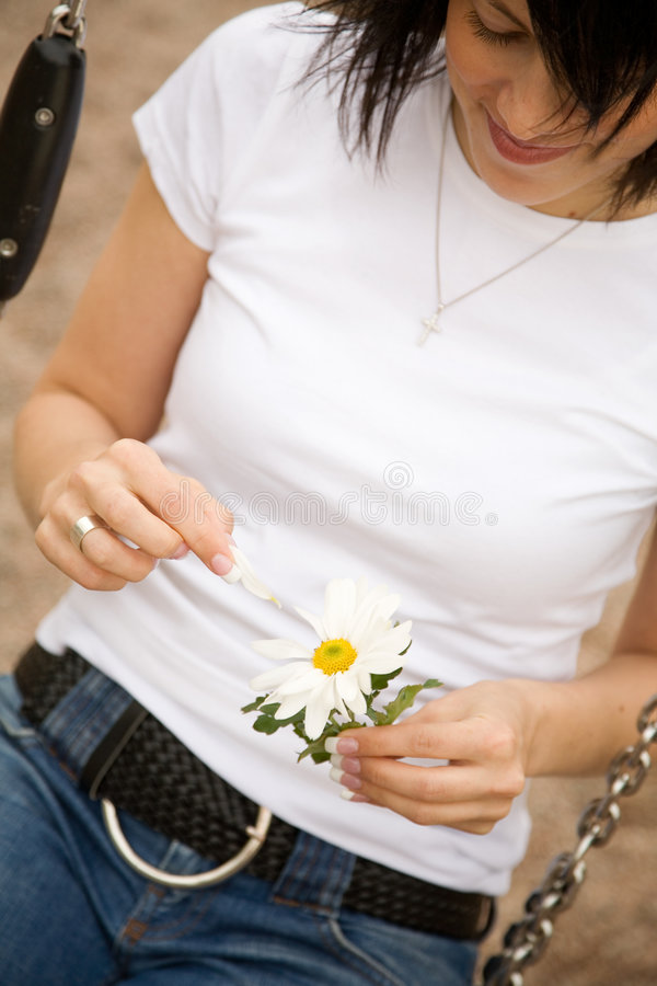 Download Loves me... stock photo. Image of petal, white, female - 2497878
