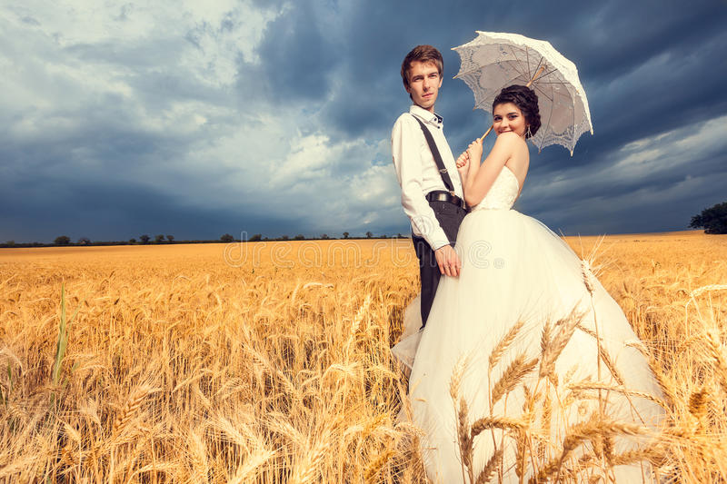 Loving bride and groom in wheat field with blue sky in the backg. Beautiful bride and groom in wheat field with blue sky in the background. Wedding photography royalty free stock photo