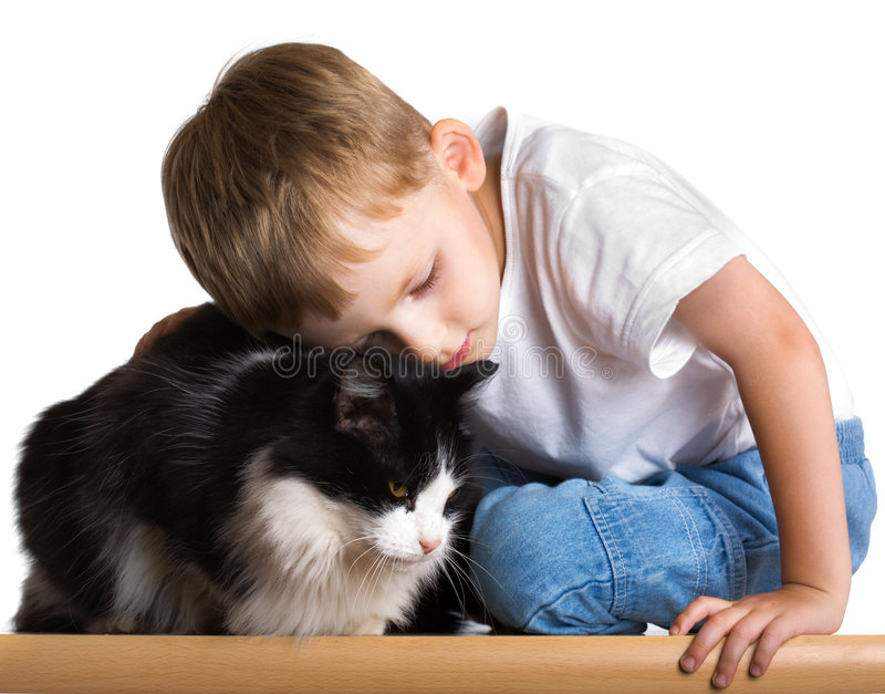 Loving child with the cat. Little boy embraces the cat royalty free stock photos