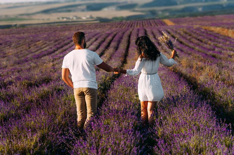 Loving couple holding hands on lavender fields. Happy couple on flower fields rear view. Man and woman traveling. Couple at sunset royalty free stock image