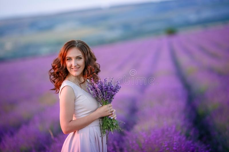 A loving couple standing in a lavender field and hugging. Beautiful bride dressed in luxurious wedding dress. Bride and royalty free stock photos