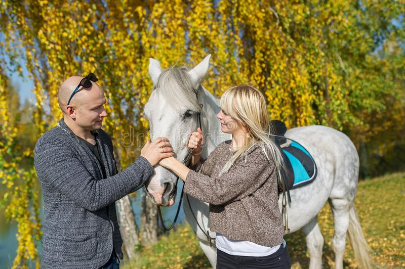 The loving couple standing next to white horse in autumn forest. royalty free stock image