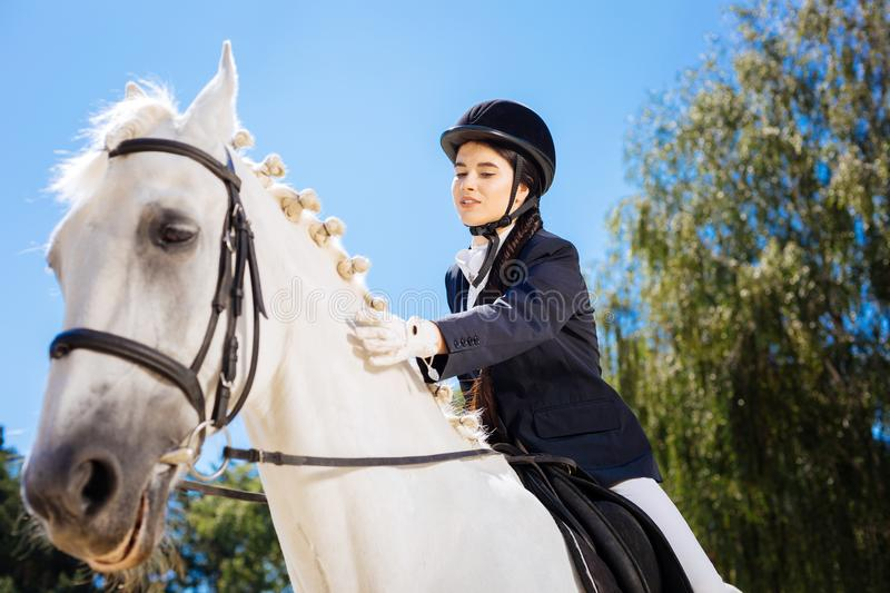 Loving horsewoman petting her gentle white horse. Loving horsewoman. Loving caring beautiful horsewoman petting her gentle white racing horse royalty free stock image