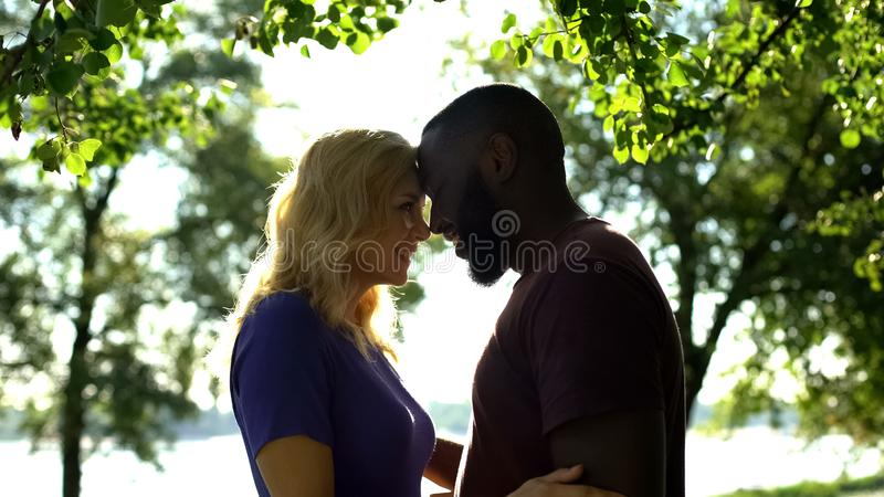Loving mixed race couple looking at each other and nuzzling, tender feelings royalty free stock images