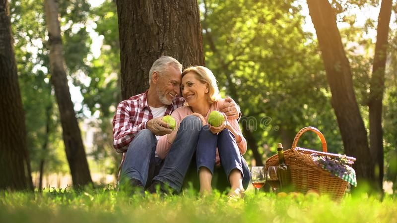 Loving old couple hugging in park and eating green apples, picnic family weekend stock photography