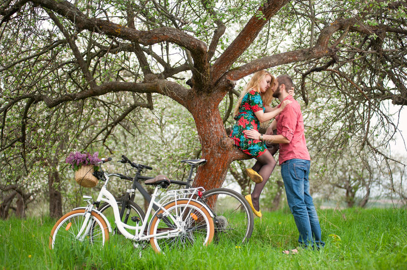 Loving young couple with bicycles in spring garden. Romantic couple near the tree and bicycles in spring garden. Female with long blond hair in flowered dress stock photo