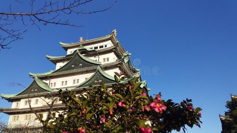 Lovly en prachtig in Japan stock afbeeldingen