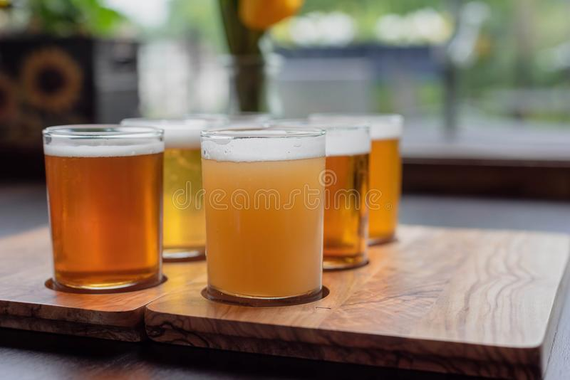 Low angle close up of samples of beer - beer flight. Low angle close up of sample glasses of beer - beer flight royalty free stock image
