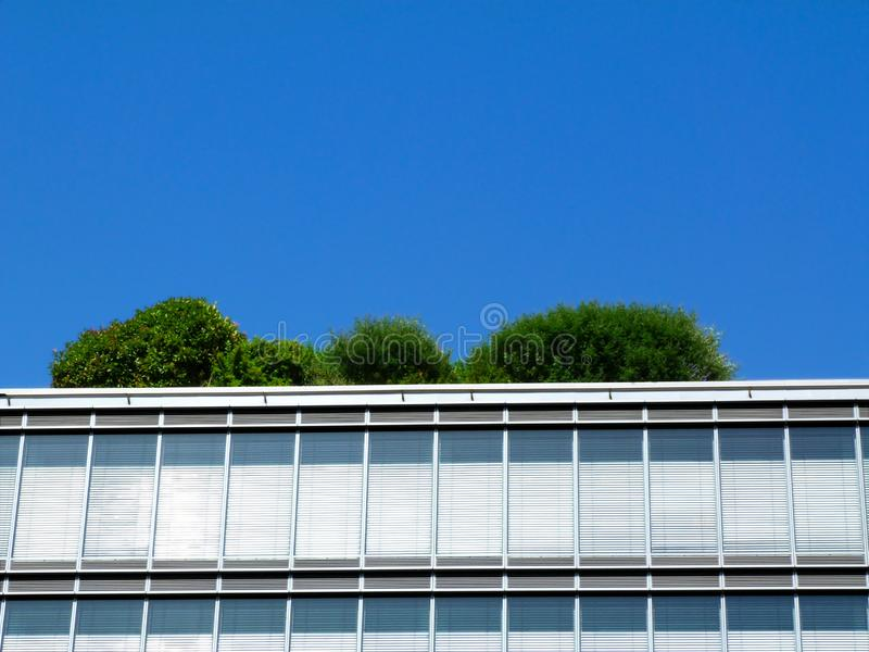 Low angle perspective of modern office building parapet edge with mature trees and bushes over top. Under blue sky. vertical aluminum grid pattern and royalty free stock photos
