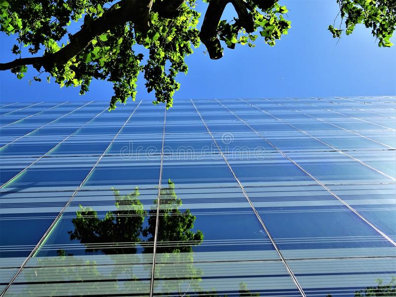 Low Angle Photography of Building Near Tree stock photography