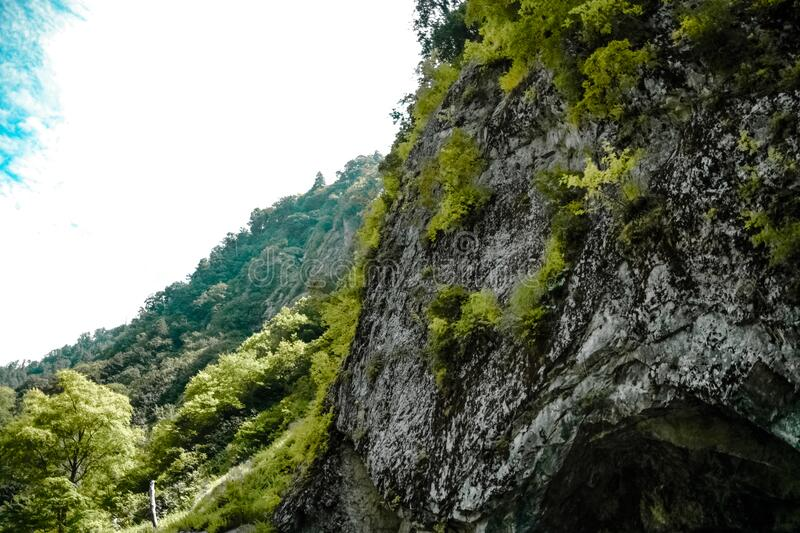 Low Angle Photography Of Gray Mountain Side Covered With Green Leaves Under White Sky At Daytime Free Public Domain Cc0 Image