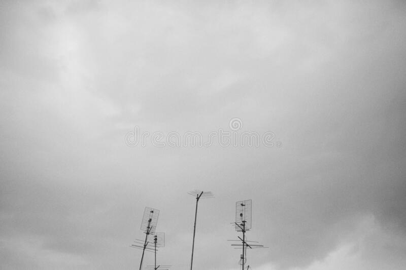 Low angle shot of electricity wires under a foggy sky. A low angle shot of electricity wires under a foggy sky royalty free stock image