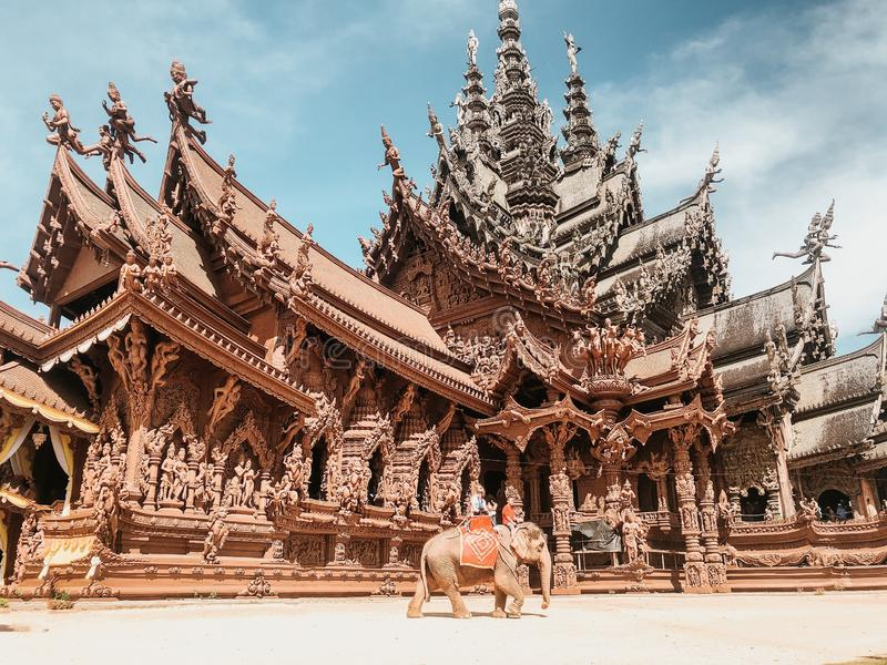 Low angle shot of an elephant in front of the Sanctuary of truth in Thailand, Pattaya royalty free stock photos