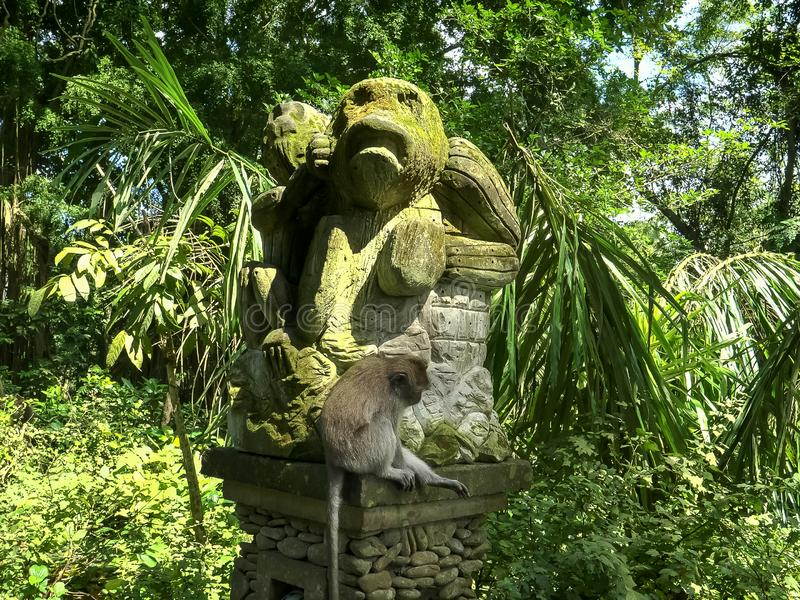 Low angle shot of a long-tailed macaque on a monkey statue in bali royalty free stock photography