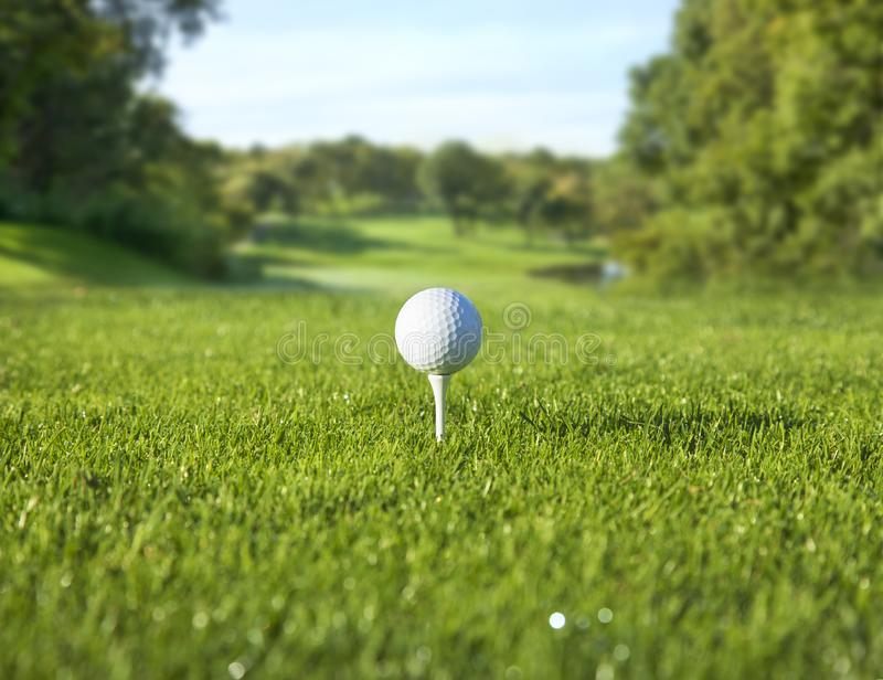 Low angle view of golf ball on a tee in front of a sunny fairway stock photo