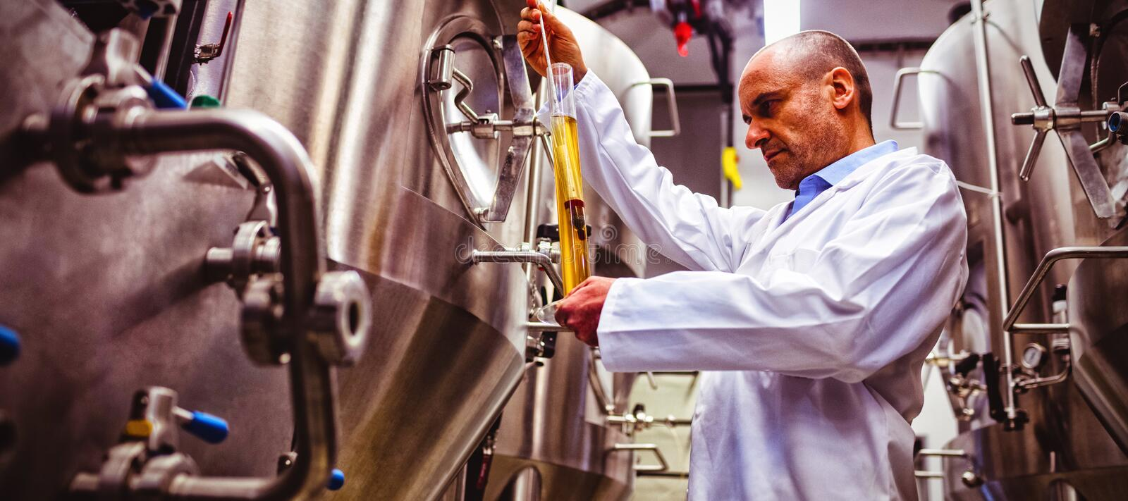 Low angle view of manufacturer examining beer. At brewery stock images
