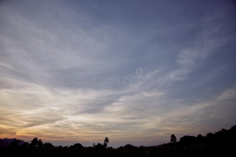Low Angle View Of Silhouette Trees Against Sky. Angle View Of Silhouette Trees Against Sky royalty free stock images