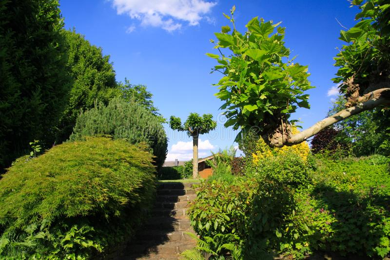 Low angle view on stone steps in german garden with two levels and green trees against blue sky - Germany. Low angle view on stone steps in german garden with stock photography